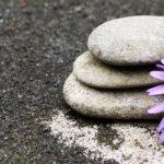 stoneflower
